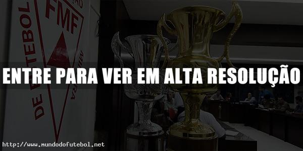 campeonato mineiro 2012