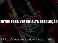 escudo flu